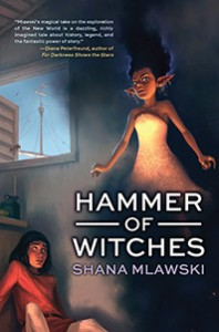 book cover of Hammer of Witches by Shana Mlawski published by Tu Books